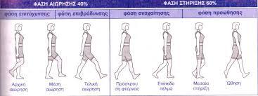 κυκλος βαδισης